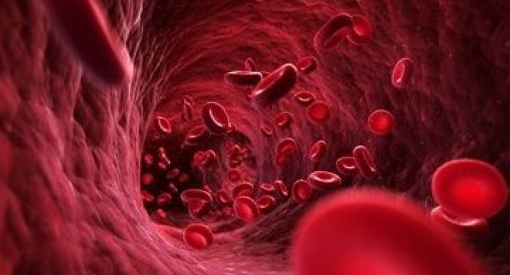 Sospendere Farmaci Anticoagulanti